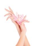 Mãos fêmeas com flores do lírio Fotografia de Stock Royalty Free
