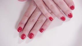 Mãos fêmeas com tratamento de mãos e laca vermelha em uma tabela branca no salão de beleza close up da mão de uma jovem mulher video estoque
