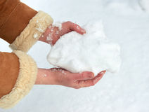 Mãos fêmeas com um punhado da neve, inverno exterior, abeto nevado na floresta Fotografia de Stock