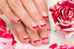 Mãos fêmeas com verniz de prego perto da Rosa Fotografia de Stock