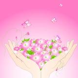 Mãos fêmeas macias com flores e borboletas. Imagem de Stock