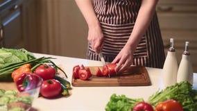 Mãos fêmeas que cortam o tomate vermelho video estoque