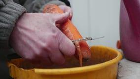 Mãos fêmeas que descascam a cenoura na cubeta filme