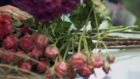 Mãos fêmeas que escolhem flores em um ramalhete Florista que prepara o ramalhete da flor filme