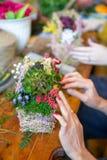Mãos fêmeas que fazem o ramalhete bonito das flores no fundo imagem de stock