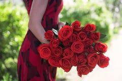 Mãos fêmeas que guardam o ramalhete da beleza de rosas vermelhas foto de stock royalty free