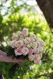 Mãos fêmeas que guardam o ramalhete da beleza de rosas vermelhas fotografia de stock
