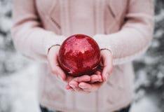 Mãos fêmeas que guardam uma bola do vermelho do Natal Dia de inverno gelado no Feliz Natal nevado da floresta e no ano novo feliz Fotografia de Stock