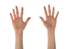Mãos fêmeas que mostram dez dedos isolados no branco Fotografia de Stock Royalty Free