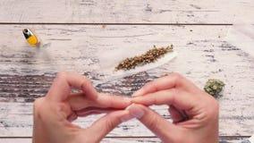 Mãos fêmeas que preparam o filtro para a junção da marijuana filme