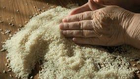 Mãos fêmeas que selecionam o melhor arroz para cozinhar, grão tocante da mão, dieta saudável, fim acima filme