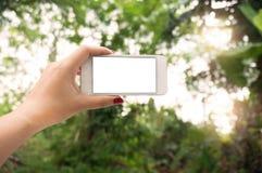 Mãos fêmeas que tomam a foto com o telefone esperto do toque branco vazio Foto de Stock Royalty Free