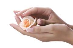 Mãos fêmeas Well-groomed Foto de Stock