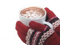 Mãos frias Fotografia de Stock Royalty Free