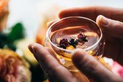 Mãos humanas que guardam o vidro da tisana fresca com os botões cor-de-rosa secos Fotografia de Stock