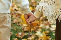 Mãos mantidas unidas Fotografia de Stock Royalty Free