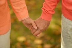 Mãos mantidas unidas Imagem de Stock Royalty Free