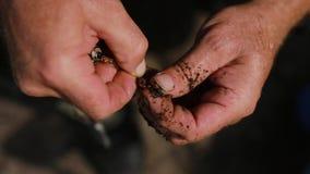 Mãos masculinas do pescador que preparam o sem-fim de pesca no fim do gancho acima vídeos de arquivo