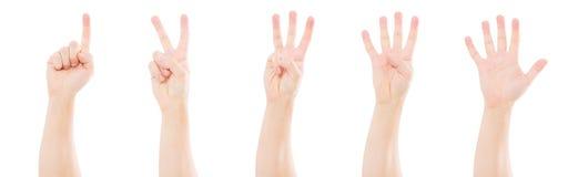 Mãos masculinas que contam um a cinco isolados no fundo branco, espaço da cópia, trocista acima fotografia de stock