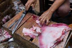 Mãos masculinas que desbastam peixes frescos em uma caixa de madeira foto de stock royalty free