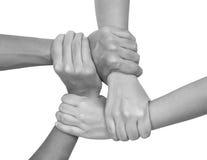 Mãos multiculturais (séries) Imagens de Stock Royalty Free