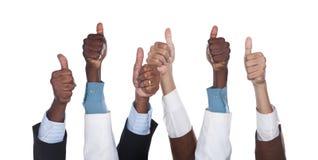 Mãos Multiracial do negócio Fotografia de Stock