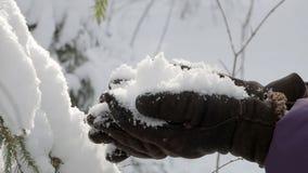 Mãos nas luvas mornas do inverno que guardam o grupo da neve macia fresca filme