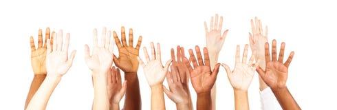 mãos novas Multi-étnicas do ` dos adultos fotografia de stock