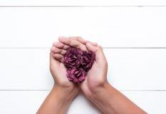 Mãos novas que guardam rosas sobre a tabela de madeira branca Imagem de Stock