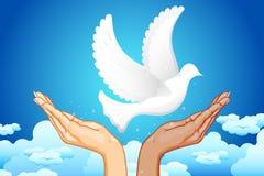 Mãos para a paz Imagens de Stock Royalty Free