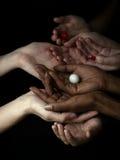 Mãos preto e branco Imagem de Stock
