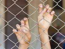 Mãos que agarram a gaiola do engranzamento Imagem de Stock Royalty Free