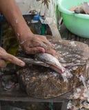 Mãos que cortam peixes frescos em uma placa de corte Imagem de Stock Royalty Free