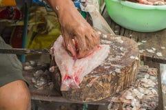 Mãos que cortam peixes frescos na placa de corte Foto de Stock Royalty Free