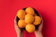 Mãos que guardam a bacia com tangerinas Imagens de Stock