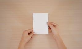 Mãos que guardam a brochura branca vazia do folheto na mão leaflet imagem de stock royalty free