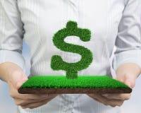 Mãos que guardam a grama verde na forma de USD com lama do relvado imagens de stock