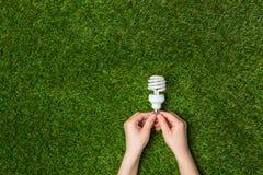 Mãos que guardam a lâmpada de poupança de energia do eco sobre a grama Foto de Stock