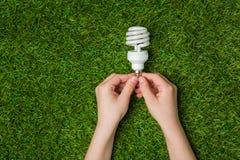Mãos que guardam a lâmpada de poupança de energia do eco sobre a grama Fotos de Stock