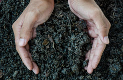 Mãos que guardam o solo, adubo orgânico Foto de Stock Royalty Free