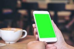 Mãos que guardam o telefone celular branco com a tela verde vazia com os copos de café na tabela de madeira no restaurante Fotografia de Stock Royalty Free