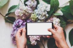 Mãos que guardam o telefone com a tela vazia no fundo de flores da hortênsia na madeira branca rústica, configuração lisa Índice  foto de stock