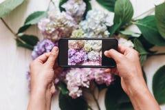 Mãos que guardam o telefone e que tomam a foto de flores da hortênsia na madeira branca rústica, configuração lisa Índice para o  fotografia de stock