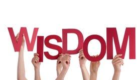 Mãos que guardam a sabedoria Fotografia de Stock