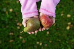 Mãos que guardam um aplle e uma pera Imagem de Stock Royalty Free