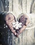 Mãos que guardam um floco de neve Imagem de Stock