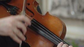 Mãos que jogam o fim do violino do pizzicato acima de FDV vídeos de arquivo