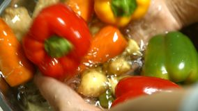 Mãos que lavam a paprika e as batatas vídeos de arquivo