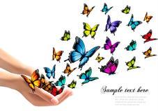 Mãos que liberam borboletas coloridas Imagem de Stock