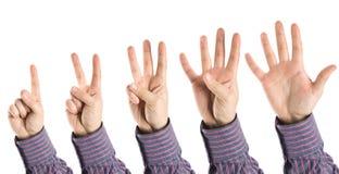 Mãos que mostram números Foto de Stock Royalty Free